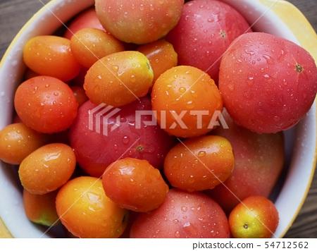 신선한 유기농 토마토와 방울 토마토 54712562