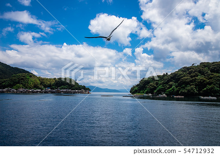 바다와 섬의 풍경 54712932