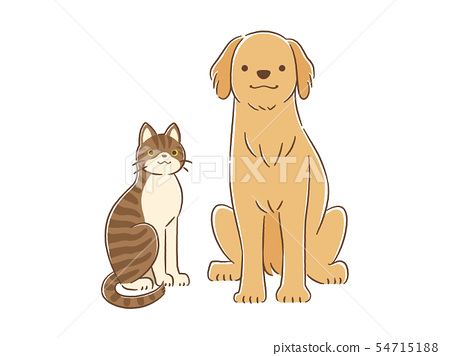 手繪觸摸狗和貓(金毛獵犬&雜交Kijitra)的插圖 54715188