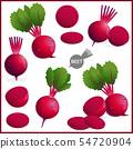 Set of fresh beet or red beetroot vegetable vector 54720904