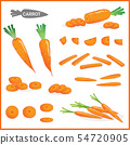 Set of fresh carrot vegetable with carrot tops  54720905