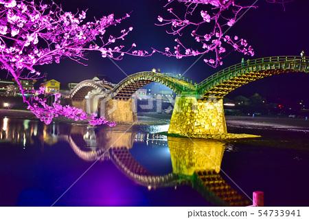 Cherry blossoms at Kinzaki Bridge at night 54733941