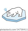 얼음에 북극곰 54736411