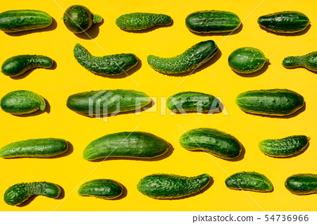 Different sizes forms cucumbers pattern on a light 54736966