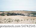 White sand dunes at Muine, Vietnam. 54742545