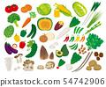 Various vegetables 54742906