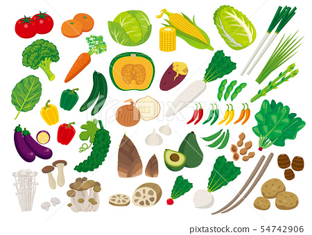 Various vegetables 54742906
