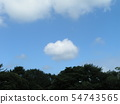 Summer blue sky and white clouds 54743565