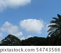 Summer blue sky and white clouds 54743566