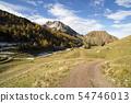 way and autumn landscape 54746013