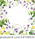 Frame of wild flowers and herbs on a white 54746633