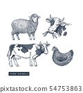 Farm animals collection 54753863