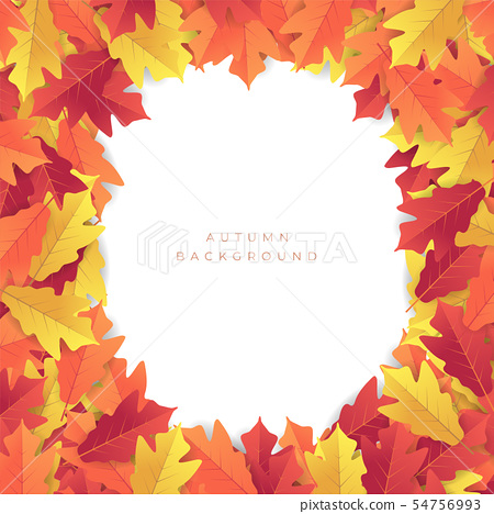 Colorful autumn red and yellow leaves background. 54756993