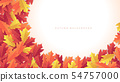 Colorful autumn leaves banner background. 54757000