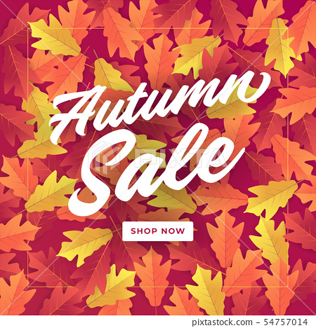 Autumn sale banner for shopping sale. 54757014