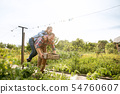 Young and happy farmer's couple at their garden in sunny day 54760607