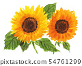 ดอกไม้,ฤดูร้อน,หน้าร้อน 54761299