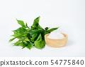 Gymnema inodorum leaf and sugar 54775840