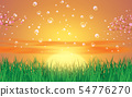 bubble on landscape of green grass in sunset 54776270