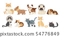 injured cartoon dogs and cats 54776849