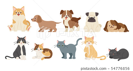 cute cartoon dogs and cats 54776856