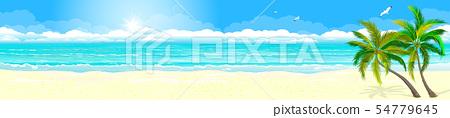 Tropics sand beach ocean 54779645