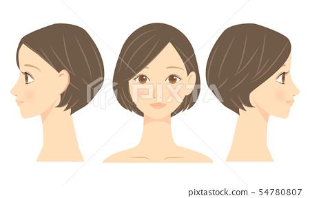 女性面部正面和輪廓 54780807