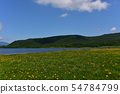 在Yukonumanuma的灰鼠和觀察樹道路 54784799