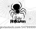 แมงมุม,เว็บ,ฮาโลวีน 54799999