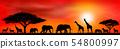 Savanna animals on a background of a sunset sun 54800997