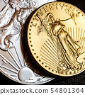 silver and golden american eagle one ounce coins 54801364