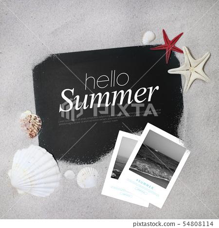 일러스트,여름,세일 54808114