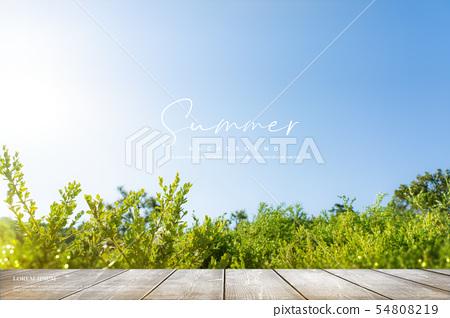 일러스트,여름,배경 54808219