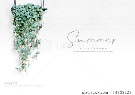 일러스트,여름,배경 54808228