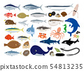Seafood illustration set 54813235
