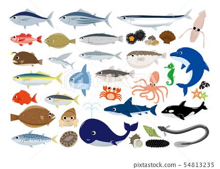 해산물 일러스트 세트 54813235