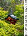 Takadai Benzaiten Bhasamondomon trace 54820420