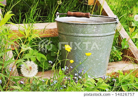 Bucket with rainwater on the wooden porch 54826757