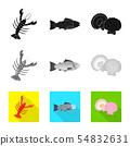 Vector illustration of fresh and restaurant logo. Set of fresh and marine stock symbol for web. 54832631