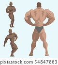 Bodybuilder sportsman characters muscular bearded man fitness male strong athlets model posing 54847863