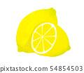 레몬 Lemon 54854503