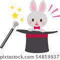 兔子走出大禮帽 54859937