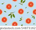 橙色 橘子 橙子 54873162
