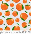 橙色 橘子 橙子 54873165