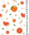 橙色 橘子 橙子 54873166