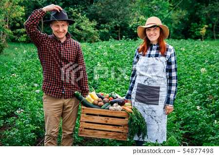 Portrait of happy farmer keep fresh organic vegetables in a wooden box on the background of a 54877498