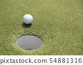golf ball 54881316