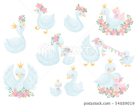 Set of image swans. Vector illustration on white background. 54889019