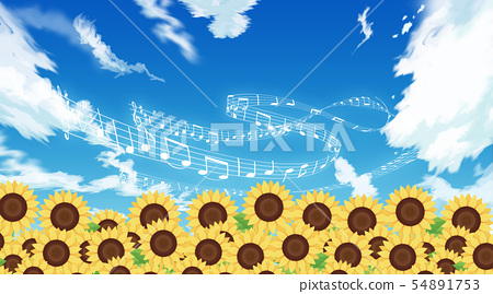 Sunflower field 54891753