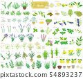 Set of herbs No. 1 54893237